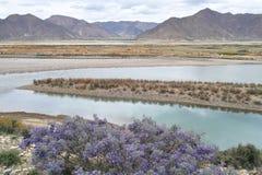 Tibetant landskap Arkivbilder