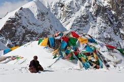 Tibetant vallfärda på det Drolma Lapasserandet, Tibet Royaltyfria Foton