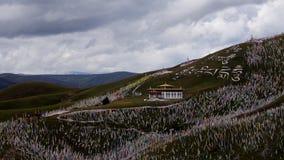 Tibetian高原, Serkyi Gyelgo,塔公乡 免版税库存照片