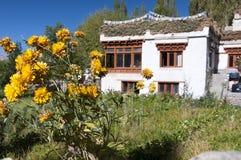 Дом традиционной сельской местности tibetian, Ladakh, Индия Стоковое Изображение RF