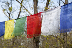 TIBETIAN PRAYER FLAGS Stock Photos