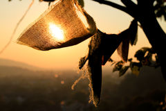 Tibetian praying flags on between trees Royalty Free Stock Photography