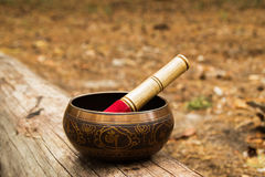 Tibetian singing bowl with wooden stick on the tree. Stock Image