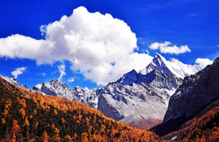 Tibets snowcapped mountains scenery Stock Photography