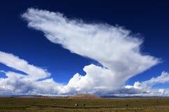 Tibetslandschap Stock Foto