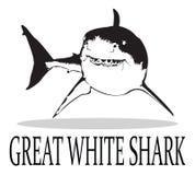 Tiburón Fotos de archivo