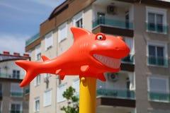 Tiburón anaranjado divertido con sonrisa blanca como la nieve en la sol fotos de archivo