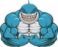 Tiburón blanco Fotos de archivo libres de regalías