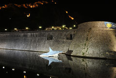 Tiburón cerca de la pared de Kotor viejo imagen de archivo