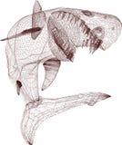 Tiburón del alambre Stock de ilustración