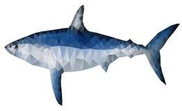 Tiburón del polígono Fotos de archivo
