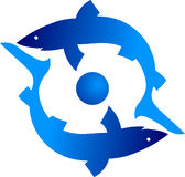 Tiburón dos Imagen de archivo libre de regalías