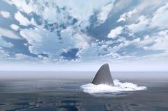 Tiburón en agua Fotografía de archivo libre de regalías