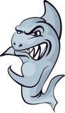 Tiburón enojado Fotografía de archivo libre de regalías