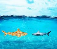 Tiburón grande hecho de peces de colores El concepto de unidad es fuerza, trabajo en equipo y sociedad fotos de archivo libres de regalías