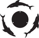 Tiburón tres Imagenes de archivo