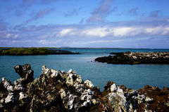 Tiburon Island. Photo of the Bay on Tiburon Island- Galapagos royalty free stock image