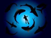 Tiburones y zambullidor de equipo de submarinismo