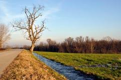 ticino för italy parkflod Royaltyfria Bilder