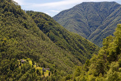 Ticino rusticos in forest mountain range Royalty Free Stock Photos