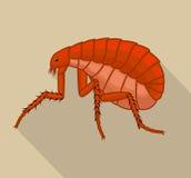 Tick Insect espeluznante libre illustration