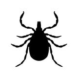 Tick parasite. Sketch of Tick. Mite. Tick  Royalty Free Stock Photo