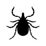 Tick parasite. Sketch of Tick. Mite. Tick  Royalty Free Stock Photo