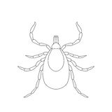 Tick parasite. Sketch of Tick. Mite. Tick  on white background. Tick Design for coloring book. Royalty Free Stock Image