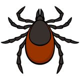 Tick Royalty Free Stock Images