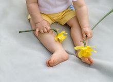 Tickle. Ten-month old baby sitting on blanket holding two daffodils royalty free stock photos