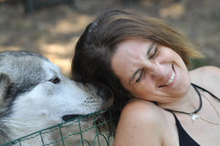 Tickling. A woman is laughing with tickles by her pet, a puppy Malamute Stock Images