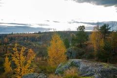 Tid av året är hösten arkivfoto