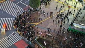 Tid för fot- trafik för stad schackningsperiod Tokyo Shibuya över stock video