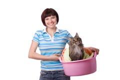 tid för tvätteri för kattdag smutsig Royaltyfri Fotografi