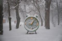 Tid fryste under snön fotografering för bildbyråer