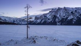 Tid schackningsperiod av den sceniska Minnewanka sjön i den Banff nationalparken lager videofilmer