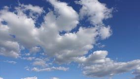Tid schackningsperiod av moln på bakgrund för blå himmel Härliga vita moln i en ren atmosfär lager videofilmer