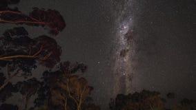 Tid schackningsperiod av rotation för mjölkaktig väg ovanför australierträd lager videofilmer