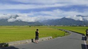 Tid schackningsperiod av skönheten av jordbruksmarken i Taitung Taiwan arkivfilmer