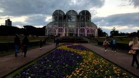 Tid schackningsperiod - botanisk trädgård av Curitiba, Parana Juli 2017 arkivfilmer