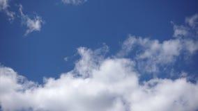 Tid schackningsperiod, härlig klar himmel i soligt väder Vita stackmolnmoln i atmosfären stock video