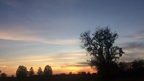 Tid sveper solnedgång i lantligt åkerbrukt liv stock video