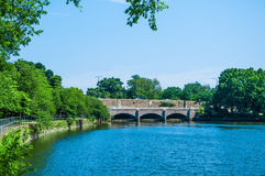 Tidal Basin Bridge with cheery tree Royalty Free Stock Photo