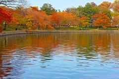 Tidal Basin with trees in autumn foliage in Washington, DC. Stock Photos