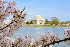 Tidal Basin Jefferson Memorial Washington DC Stock Images