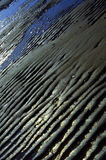 Tidal Beach Sand Ripples. Undulating ripples form in the sand after the receding tide along Crescent Beach in Cape Elizabeth, Maine Stock Image