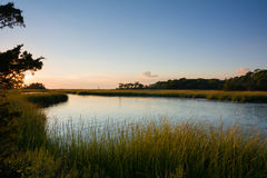 Tidal creek and salt marsh on Horseshoe cove, Sandy Hook Royalty Free Stock Images