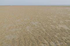 The tidal flat in the ebb tide time. On clear day stock photos