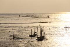 Tidal flat in the morning and one in the view of nets in the capture of aquatic products. Winter morning, under the water, a man in the monitor nets in the Stock Photos