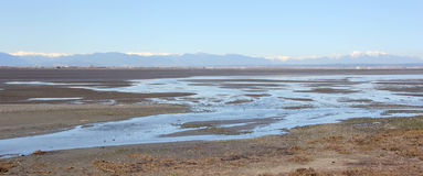 Tidal Flats of Boundary Bay Stock Images